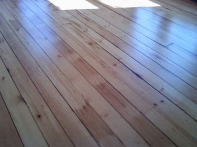 Refinished white pine floor
