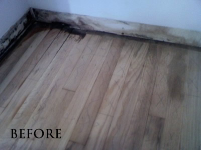 Urine stained red oak floor