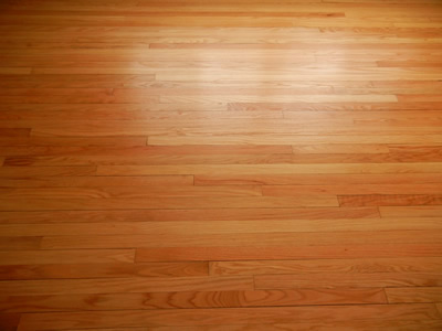 sq inch en the floor hardwood canada w flooring categories natural wood home click depot floors engineered p hickory
